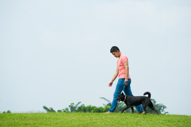 Como perder peso - homem caminhando com cachorro