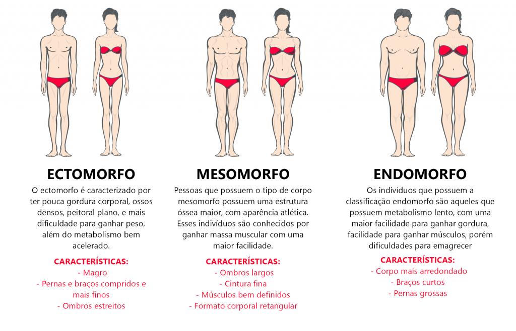 Os tipos de corpo de cada pessoa são determinados pelos genes presentes em cada organismo. Saiba mais nesse post.
